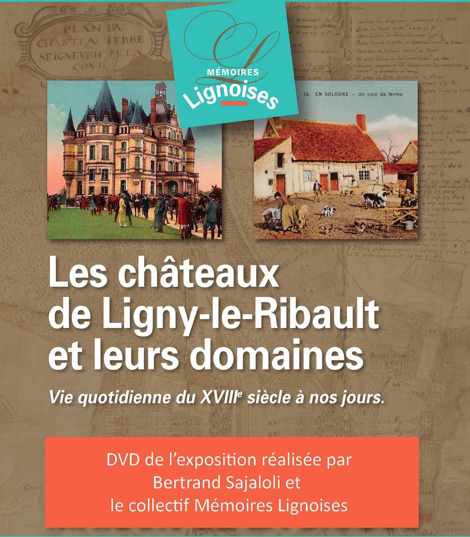 Jaquette DVD Expos chateau