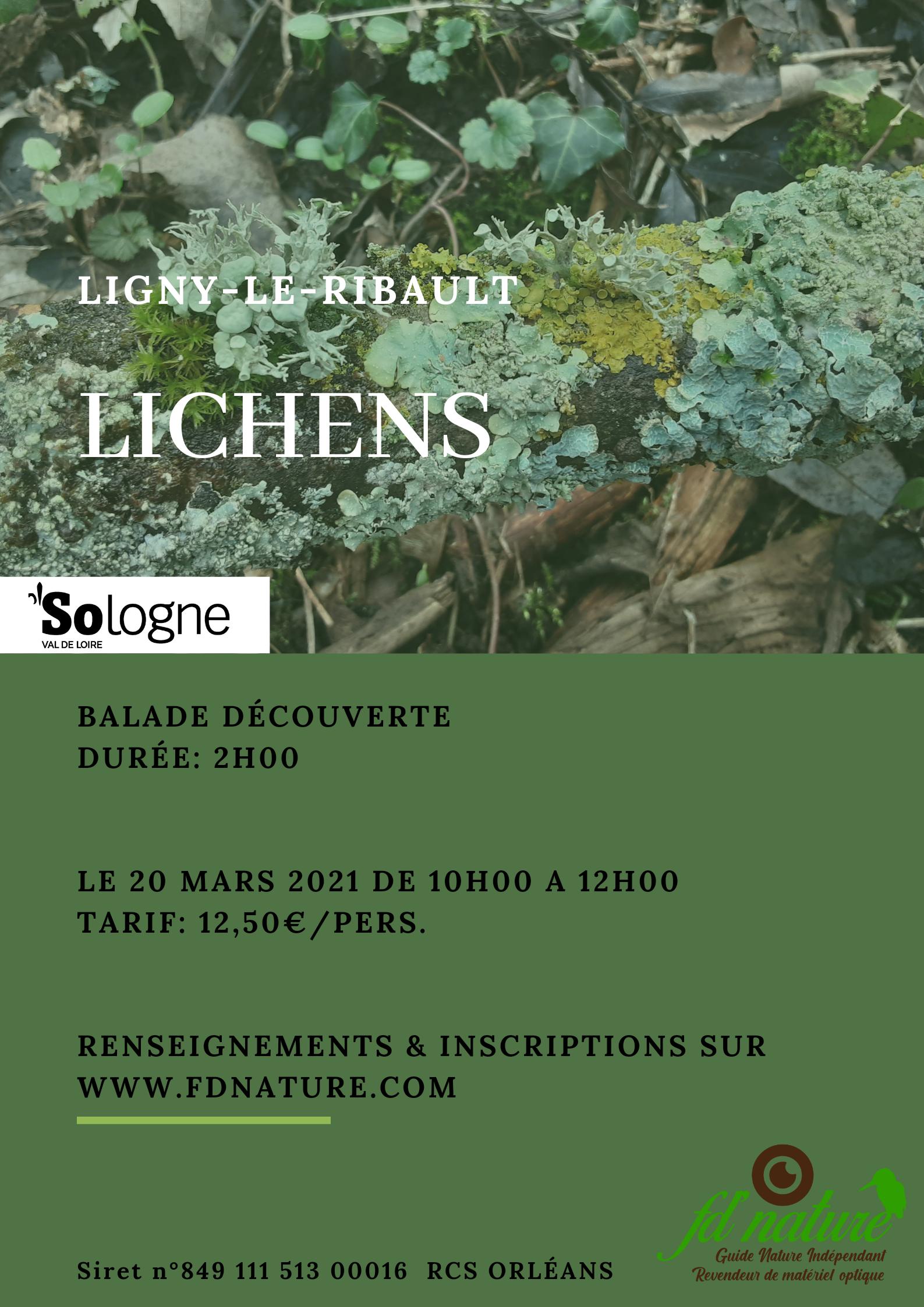 Balade lichen 20 03